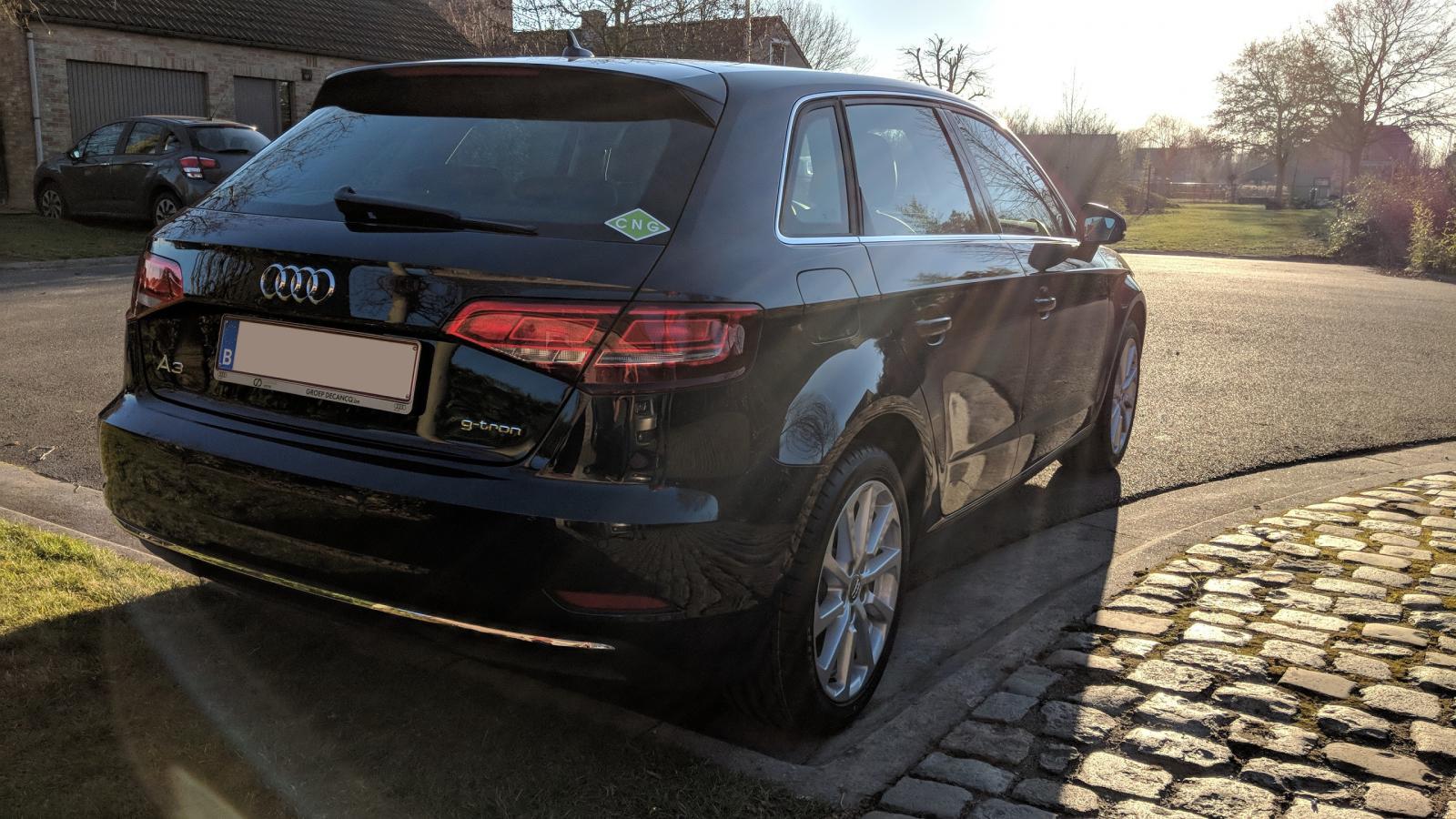 Audi A3 G-Tron van VASI91
